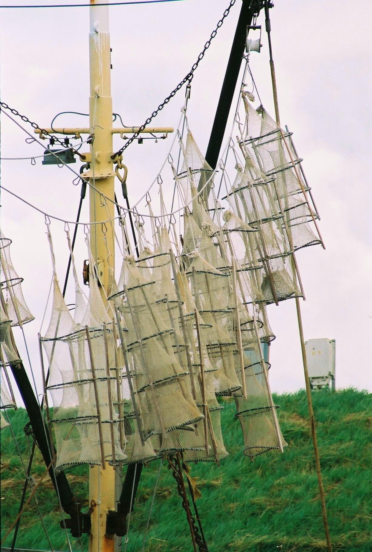 Fuiken die hangen te drogen aan boord in de haven van Yerseke een mooi gezicht